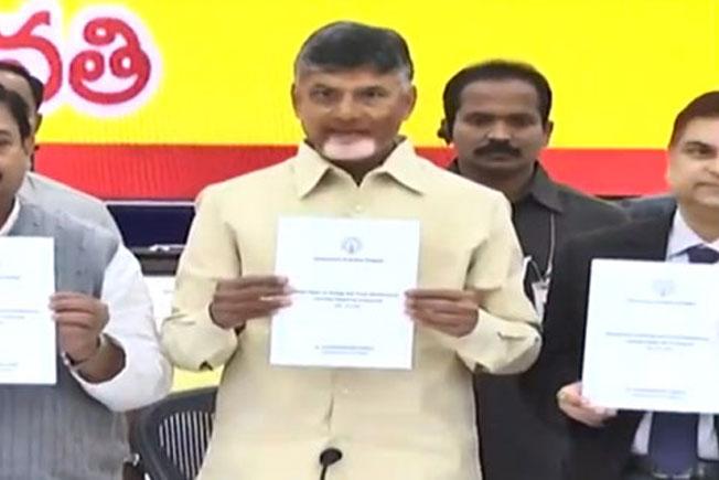 AP CM, Chandrababu Naidu, White paper, AP development programs, Andhra Pradesh CM
