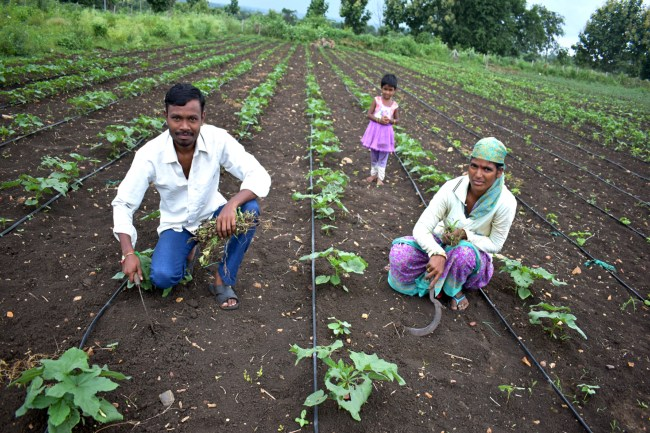 TELANGANA COUPLE INSPIRING PEOPLE TO TAKE UPORGANIC FARMING