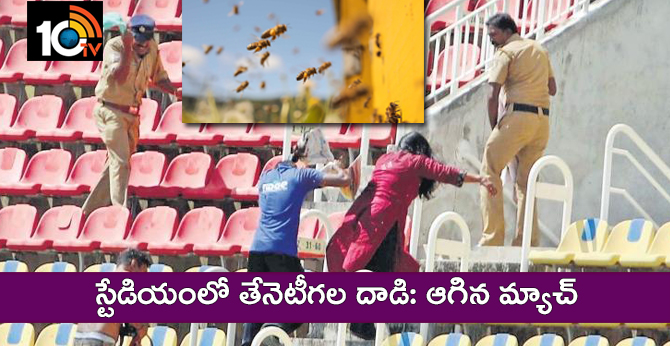 Bee attack in Kerala Cricket Stadium, India A Match delayed to 15 minutes, Video goes viral