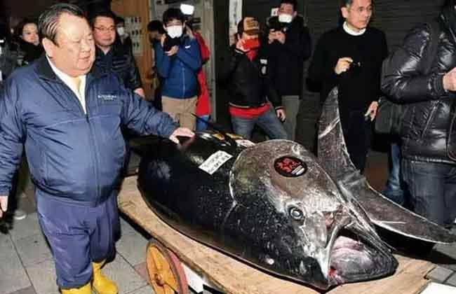 Tuna Fifh : Cost Rs 21 Crore
