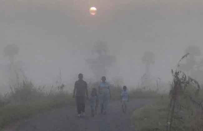Dense Fog Troubles Telugu States