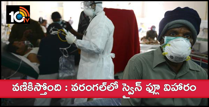 Swine Flu Case In Warangal Dist