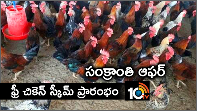 Tamil Nadu govt launches free country chicken scheme for rural women..