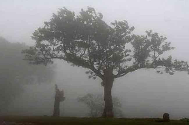 Winter Season in Telugu States Very Cold | 10TV