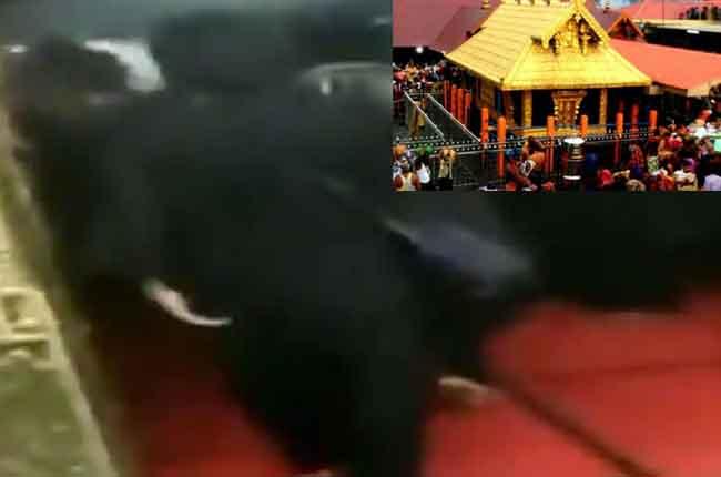 Sabarimala News : Two women prayers at sabarimala temple | 10TV