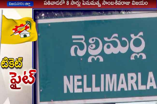 Tough Time Nellimarla TDP Ticket