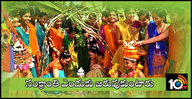 Importance Of Sankranthi Festival