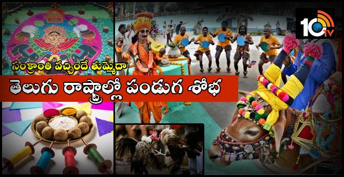 Sankranthi Celebrations In Telugu States