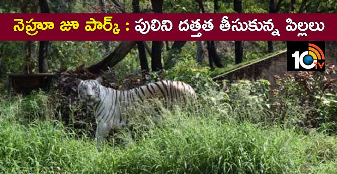 NASR School students adopt white tiger
