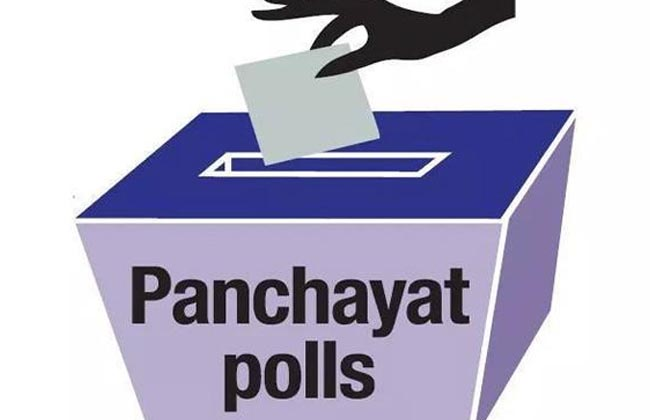Panchayat Elections In 259 Places