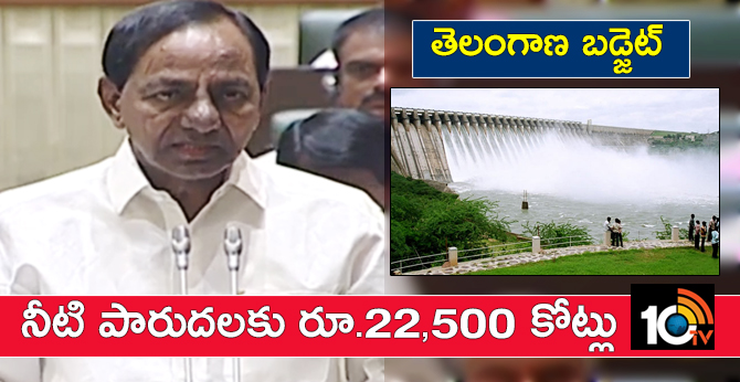 Telangana Budget: Rs. 22,500 crores for irrigation