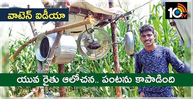 young farmer idea save crop