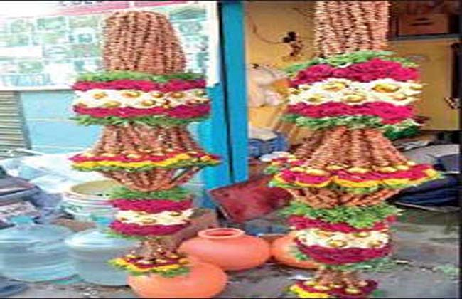 Mandi MP candidate Nikhil Gowda is a 300-kg raisin  garlad In karnataka