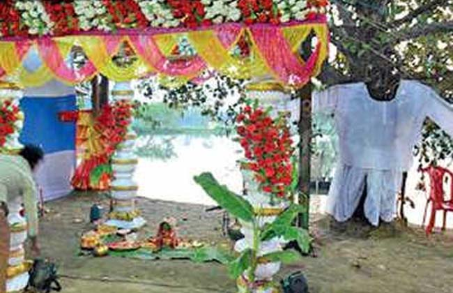 Marri, Ravi Trees, married to Vedamantra in Bengali tradition