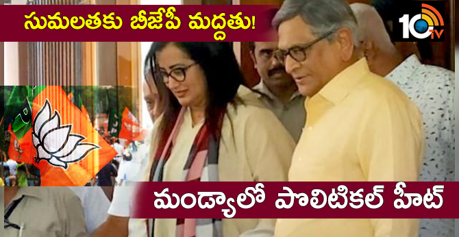 will bjp back sumalatha in mandya?when she decides we will decide: says sm krishna
