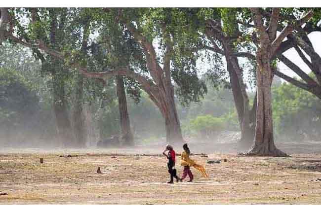 Heatwave Kills 07 In Andhra Pradesh