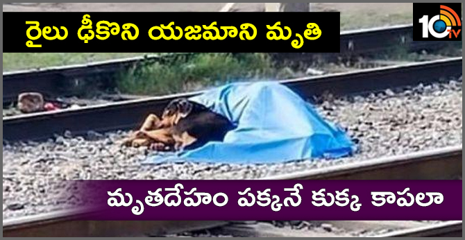 Owner Got Hit By Train, Loyal Dog Lay Next To His Body, Refused To Move there