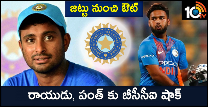 Pant and Rayudu out of India's World Cup squad