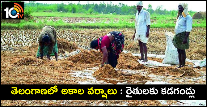 Premature rains in telangana Crop damage