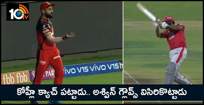 Ravichandran Ashwin throws his gloves in anger after virat kohli caught
