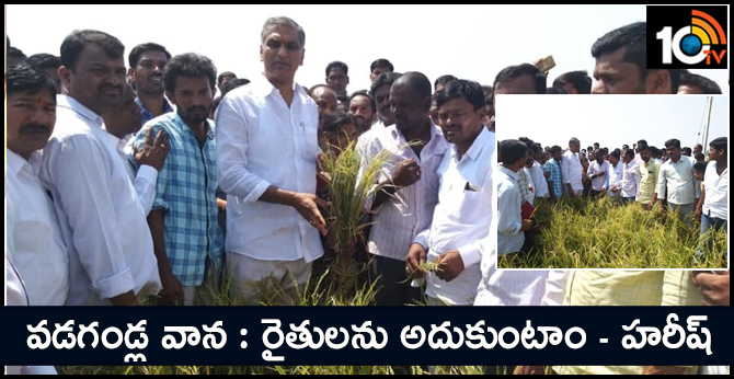 We will help the affected farmers