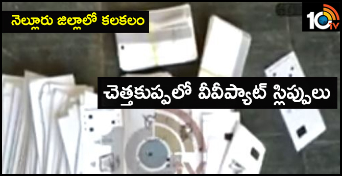 vv pat slips found in nellore district