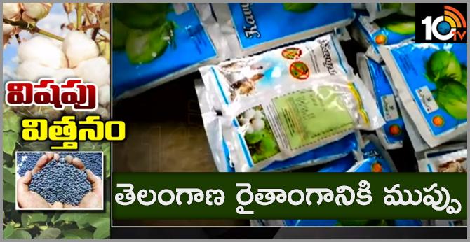 BG-3 seeds Dangerous to telangana farmers