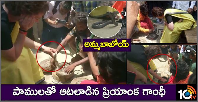 Priyanka Gandhi Vadra meets snake charmers in Raebareli, holds snakes in hands