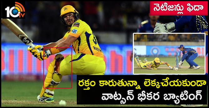 Shane Watson Battled For CSK With Bloodied Knee