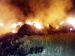 8 acres of crop burned in nirmal district
