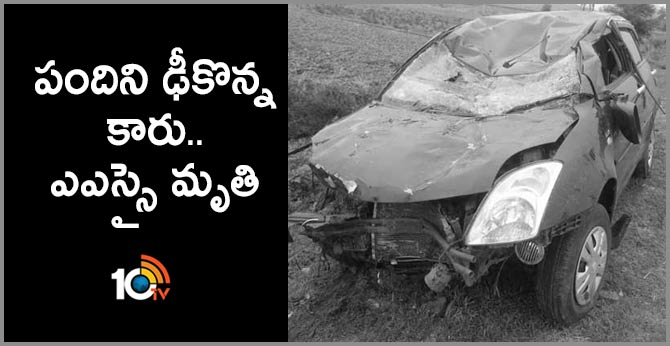 Car collided with a pig.. ASI died