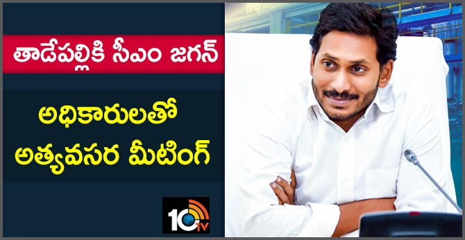 Grand welcome to YS Jagan America Tour End