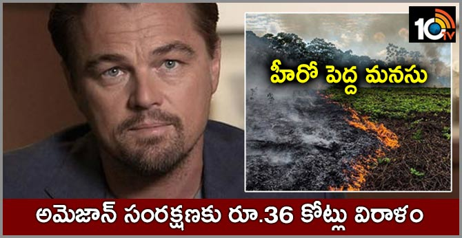 Leonardo DiCaprio donate 5 million dollars to Amazon rainforest