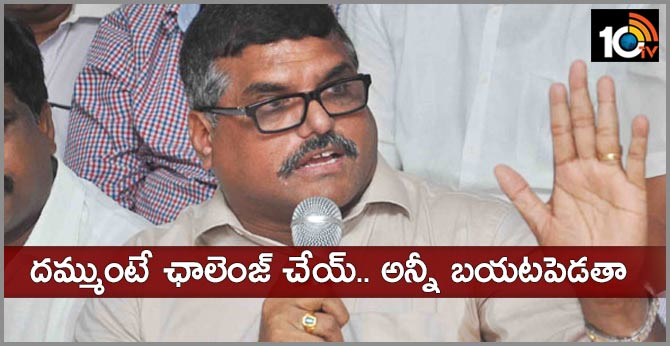 Minister Botsa Satyanarayana Sensational Comments On Capital in side trading issue