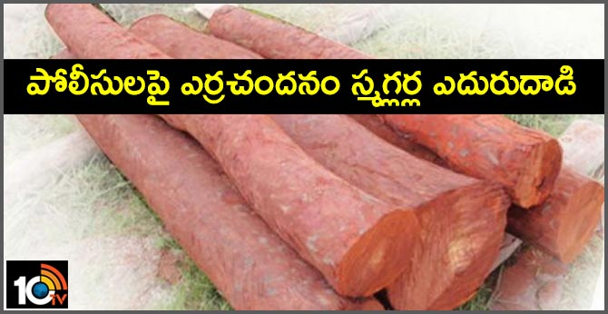 Red Sandalwood smugglers counter attack on police In Chittoor Seshachalam forests