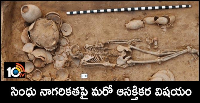 Ancestors of sindu people were Iran farmers