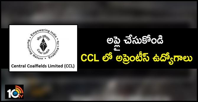 CCL Recruitment 2019: 750 Apprentice Posts.