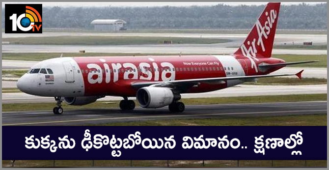 Dog enters Goa airport runway causing AirAsia India flight to abort take-off