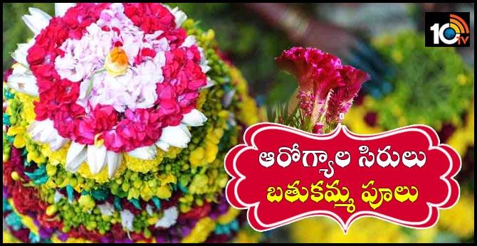 Health benifits with Bathukamma Flowers