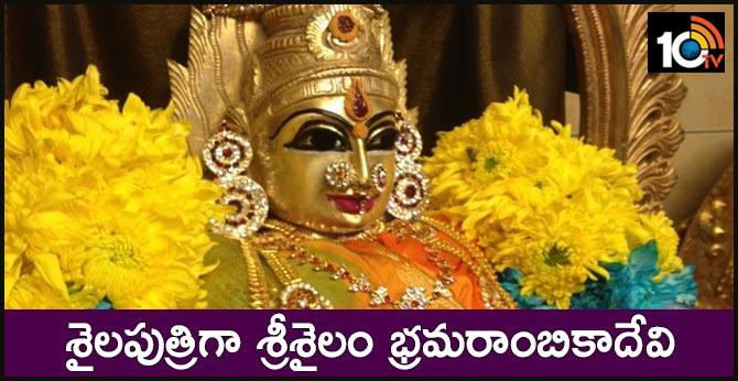 Sisailam Bhramarambikadevi as Shailaputri in Dussehra festivals