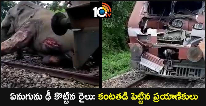 Train Hits And Critically Injures Elephant In North Bengal... Video Goes Viral