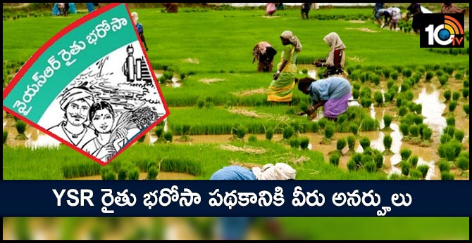 YSR Rythu Bharosa Scheme does not apply to them