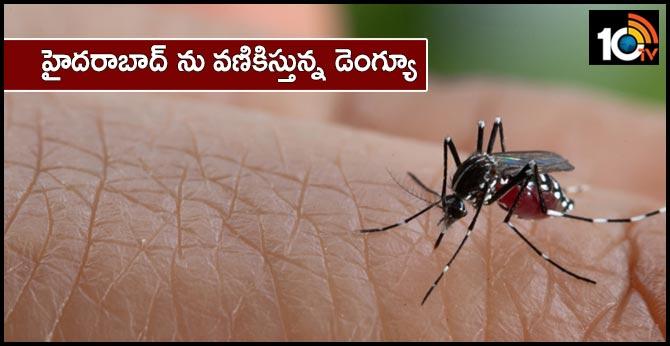 increase Dengue Cases at Hyderabad