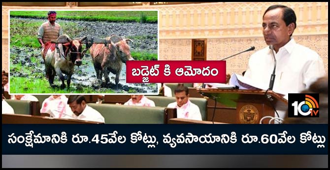 telangana budget, importance for welfare, agriculture