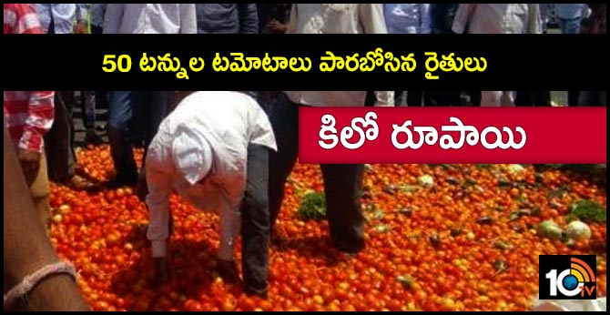 Furious ryots dump tomatoes in Kurnool district due to unbelievably low price