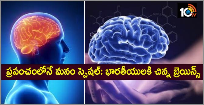 IIIT Hyderabad Creates First Ever Indian Brain Atlas, To Help Early Disease Diagnosis