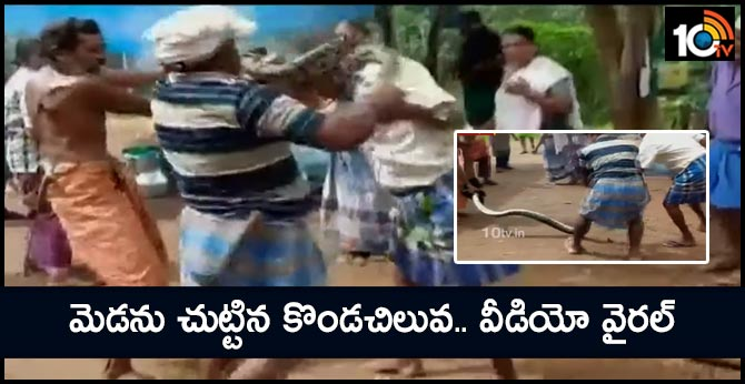 Viral Video: Python Coils Around Man's Neck, Labourers Save Him In Nick Of Time