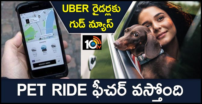 Uber Could Soon Allow Pets To Travel With You, As It Starts Testing Uber Pet Ride Option
