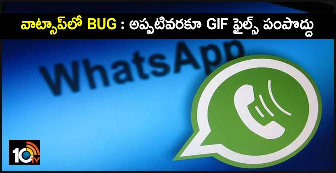 WhatsApp alert: Don't send GIFs until you update app to avoid security risk