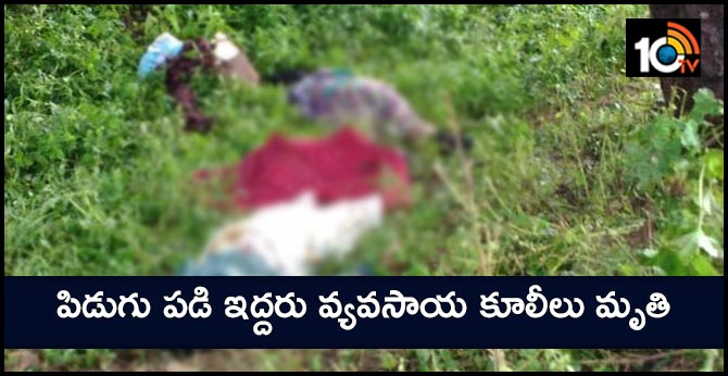 two farm laborers died by thunderstorms in adilabad district